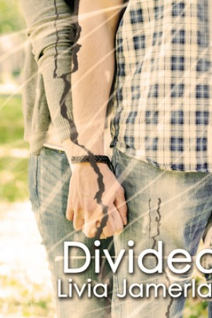Divided by Livia Jamerlan - New Release